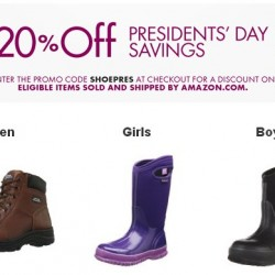 Amazon Shoes and Handbags Promotion
