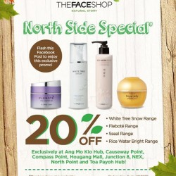 TheFaceShop | North side promotion 20% off selected items