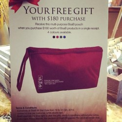 BsaB | multi-purpose pouch with $180 spent