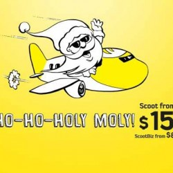 Scoot   ADDITIONAL 20.15% OFF promotion