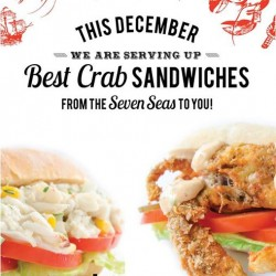 Catch 'n Bite | Christmas Promotion Best seller for $8