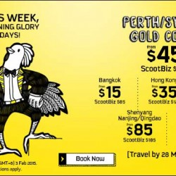 Morning Glory Tuesdays Airfare from $15
