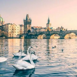 Discover Europe fr just $1273 (return) on SWISS @ ZUJI