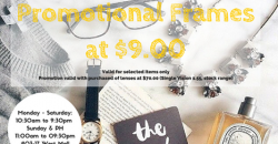 BetterVision: special frames@$9.00