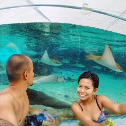 Resorts World: Adventure Cove Waterpark @Sentosa
