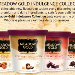 Meadow Gold: Any 2 Tubs for $14.95
