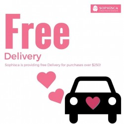 Sophisca candy and gift store: Free Delivery – When You Purchases Over $250