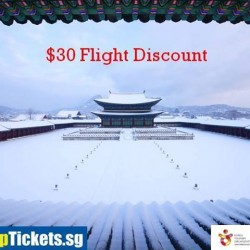 CheapTickets: Flight Discount @$30