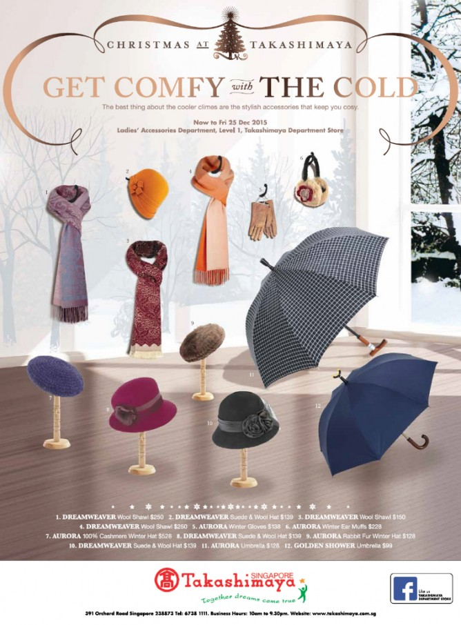 Winter-Holiday-Ladies-Accessories-Ad