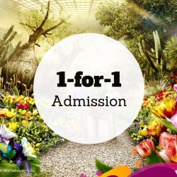 NTUC: 1-for-1 Admission to Gardens by the Bay