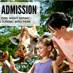 Wildlife Reserves Singapore: 20% OFF Adult & Child Admission Tickets for NTUC, Passion and SAFRA Card members