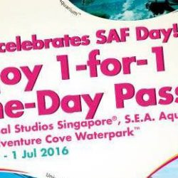 Resorts World Sentosa: 1-for-1 One-Day Passes on SAF Day!
