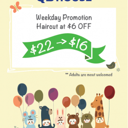 QB House: Weekday Promotion Haircut at $6 OFF at Waterway Point