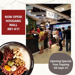 Nine Fresh Desserts Taiwan: Free Topping of the Day at Hougang Mall