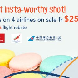 ZUJI: All Flights on 4 Airlines on Sale from $255 (Return)!