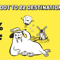 FlyScoot: Exclusive Amex Promo Code for 20% OFF 22 Scoot Destinations!