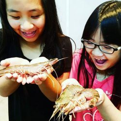 [THE SEAFOOD MARKET PLACE BY SONG FISH] Today's special: #Jumboprawns !!! $33/kg *While Stock last* Hurry and grab it in stores now!!!! 🏃🏼♀️🏃🏼 The kids are so