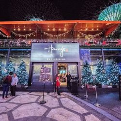 [Harry's Bar] Countdown to Christmas with us at the enchanting Two-Storey Glass House! Our live band's playing from 10pm till