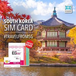 [Changi Recommends] Got your South Korea prepaid SIM card for your next trip? Click here goo.gl/GBhcgURemember to activate it