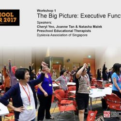 [Dyslexia Association of Singapore] EXECUTIVE FUNCTIONING SKILLS (EFS) are a set of skills children can acquire to improve their working memory, cognitive flexibility, impulse-