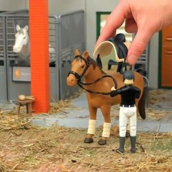 [The Collector] Are you ready to go for a trail ride? The development of the Bworld figures enables an active recreation of