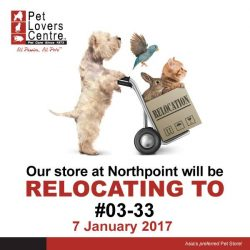 [Pet Lovers Centre Singapore] PSA: We are MOVING!! On the 7th of January, our NORTHPOINT outlet will be relocating to #03-33! :) We'll