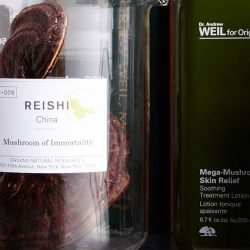 """[Origins] Dubbed as the """"Mushroom of Immortality"""", Reishi's life giving and healing properties are why it's often used in"""