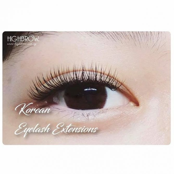 Highbrow Want Short Natural Yet Super Soft And Light Lash