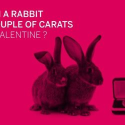 [American Express] Happy Valentine's Day! Be one of the first 300 to tell us how the rabbit bought a couple of