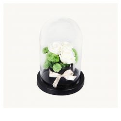[Xpressflower.com] Our luminous preserved roses are presented in a gorgeous bell jar, granting them an aura of alluring enchantment.Like true