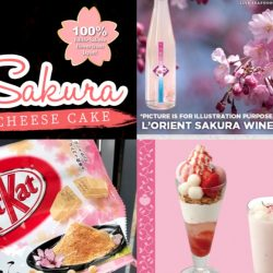 It's Sakura season! Dun miss these Sakura creations available for a limited time only in Singapore!