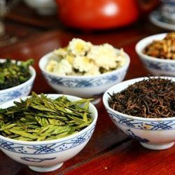 [Kin Teck Tong] Which kind of tea is best for you?