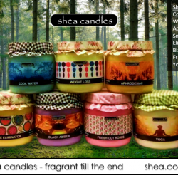 [Shea] How to use candles.