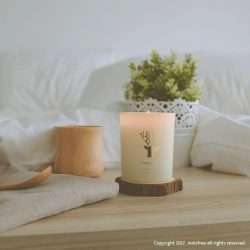 [Innisfree Singapore] Join innisfree this Earth Hour 2017!