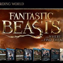 [Poh Kim VCD/DVD] This reward season, discover a world of wonder with FantasticBeasts!
