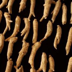 [Eu Yan Sang] Curious about the differences between traditional Korean and American ginseng?