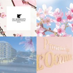 [L'Occitane] The sweet pink season of Cherry Blossom is approaching!