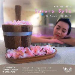 [Yunomori Onsen and Spa] Sakura Baths are now available at our Onsen!