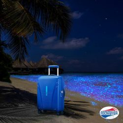 [American Tourister] What are you doing for Earth Hour 2017?