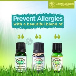 [Lemongrass House] Make the most of all the Lemongrass House Essential Oils by blending them together and brewing the best solutions to