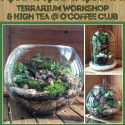 [O' Coffee Club] Be inspired by nature and get creative, as we bring you our 1st Terrarium cum High Tea workshop @ O'Coffee