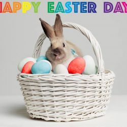 [EpiCentre Singapore] EpiCentre wishes everyone a Happy Easter Day!