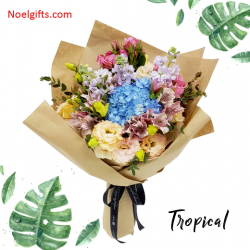 [Noel Gifts] Bring the nature of tropical to your loved one's door step with these beautiful blooms!