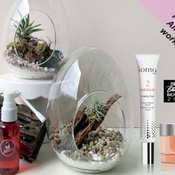 [IOMA] Personalised airplant & skincare workshop with IOMA -Introduction and sneak preview for IOMA's newest product launch.