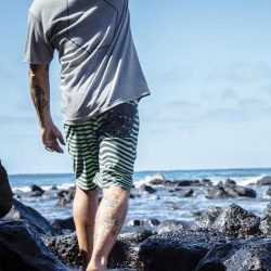 [Volcom] From the water to the beach to the street, Volcom Stoneys are the ideal summer boardshorts.