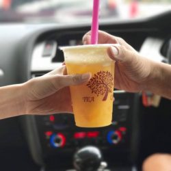 [Tea Tree Café] Cravings for bubble tea?