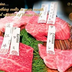 [Magosaburo] What meat would you prefer to enjoy after long weekend?