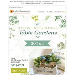 [FarEastFlora] Enjoy 20% off table plants arrangements while providing a little sanctuary for tired minds!