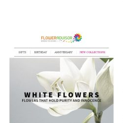 [Floweradvisor] FLOWERPEDIA. A Color That Holds Purity and Innocence