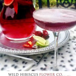 [Wild Hibiscus] Can't celebrate CincodeMayo without a Margarita.